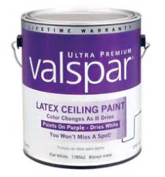 A Color Specialist In Charlotte What Color Should I Paint Ceiling Paint That Goes On Pink