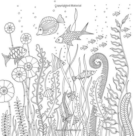 coloring book for adults johanna basford 17 best images about johanna basford on the