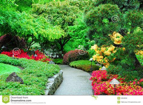 pictures of garden butchart gardens stock photo image of gardening nature