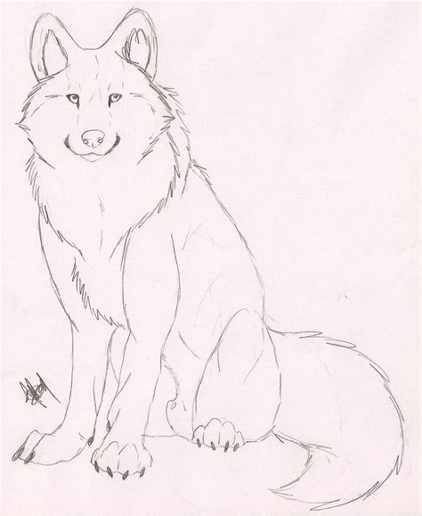 doodle speed drawing speed drawing wolf sketch by rurouna on deviantart
