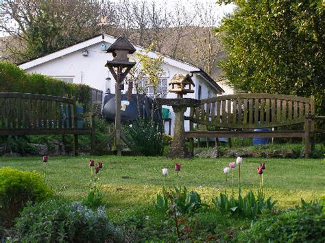 Cottages That Accept Dogs by We Accept Pets Pet Friendly Hotels B Bs Self