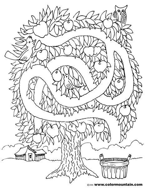 apple orchard coloring page free coloring pages of apple picking