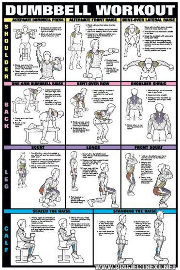 dumbbell workout chart 1 healthy fitness workout