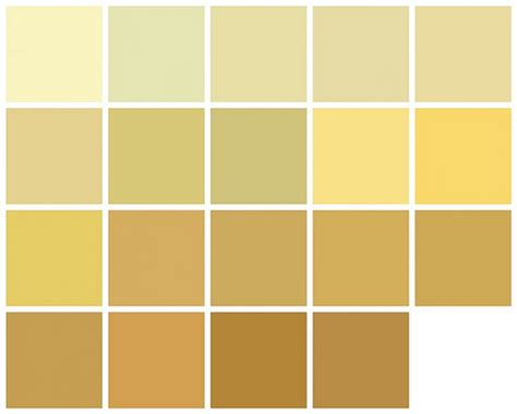 home depot popular paint colors unique yellow paint colors 2 home depot yellow paint