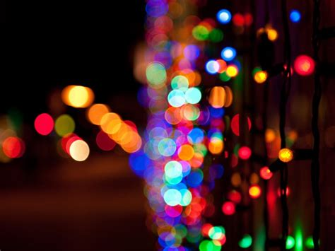 recycle holiday lights at city park district locations