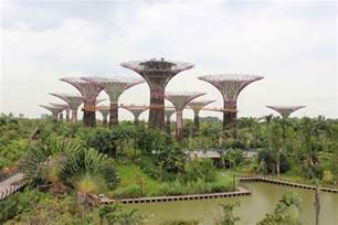 gardens by the bay singapore s most popular running spot