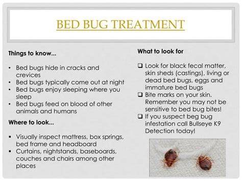 bed bugs after treatment ppt kill bed bugs powerpoint presentation id 7530478