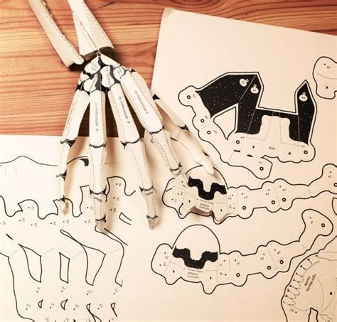 Make Your Own Paper Skeleton - build your own human skeleton book creepbay