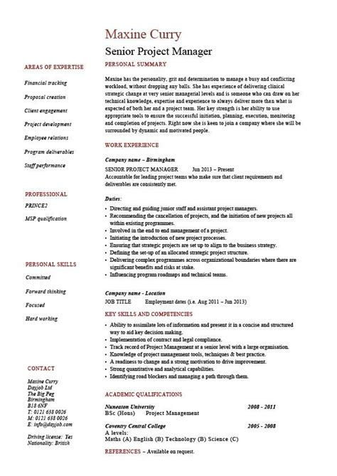 Sample Of One Page Resume by Senior Project Manager Resume Sample Example References