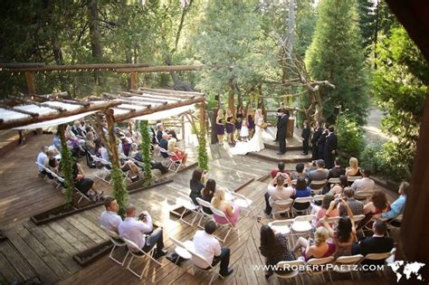 pine weddings http www pinerose weddings big