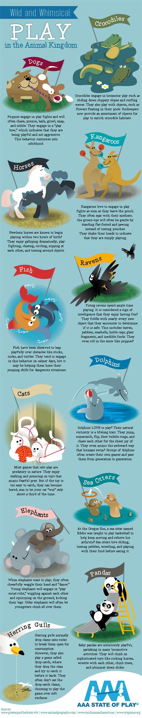 infographics animal kingdom 1848776543 wild and whimsical play in the animal kingdom infographic animals infographic list