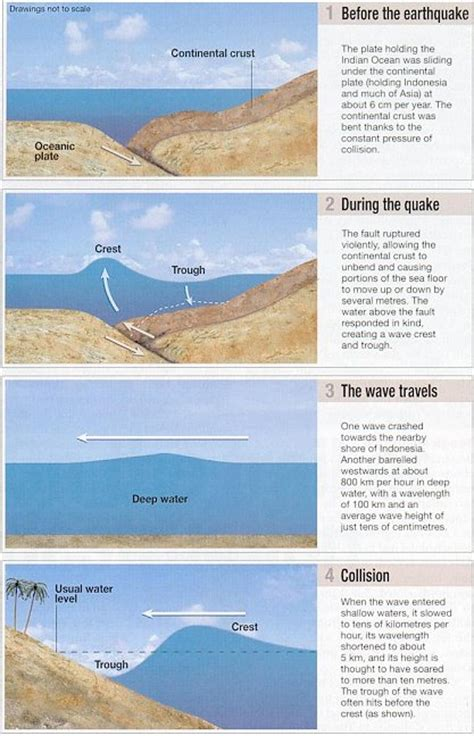 a diagram of a tsunami tsunami diagram supergirl photoalbum1