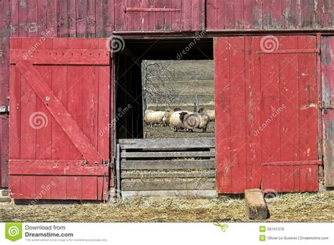 libro open the barn door old red wood sheep barn and flock stock image image 29741379