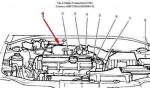 2004 Hyundai Sonata Purge Valve I Need To Replace The Purge Valve In My 2003 Hyundai