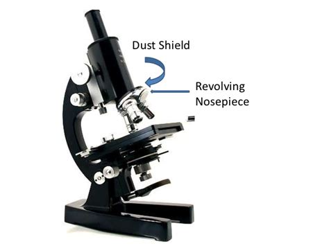 compound light microscope parts and functions parts and functions of a compound microscope