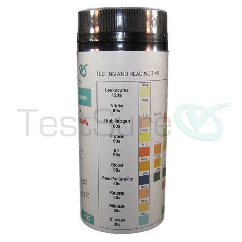 urine test strips 10 parameter at home urinalysis test