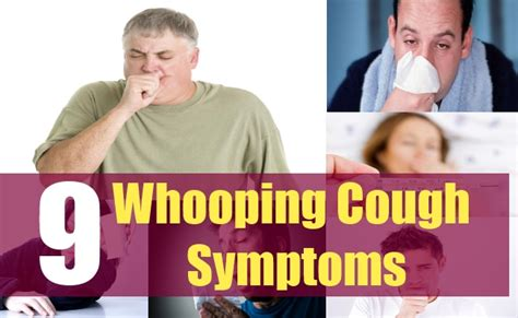 whooping couch symptoms top 9 whooping cough symptoms the signs and symptoms of