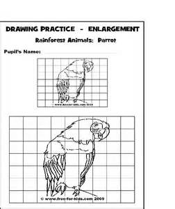 Scale Drawing Online Scale Drawing Examples Www Imgarcade Com Online Image