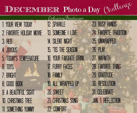 december 2013 photo a day challenge