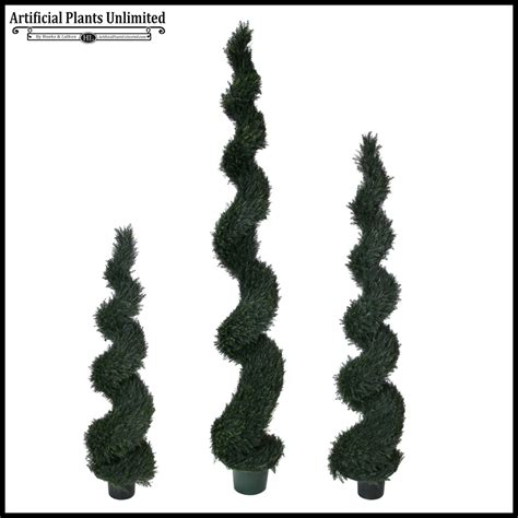 spiral topiaries outdoor 10 h pond cypress spiral topiary outdoor