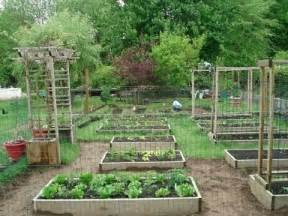 backyard gardening backyard organic gardening ideas how my transformed