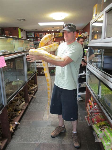 Detox Stores In Tucson by 1st Response Wildlife Reviews The And Reality Of