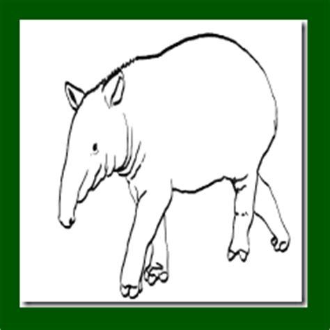 animales peligro extincion peru para colorear dibujo para colorear animales amenazados o en peligro