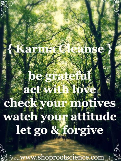 Detox Karma by Karma Cleanse Quot Be Grateful Act With Check