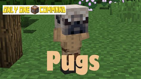 pugs in minecraft pugs only one command minecraft project