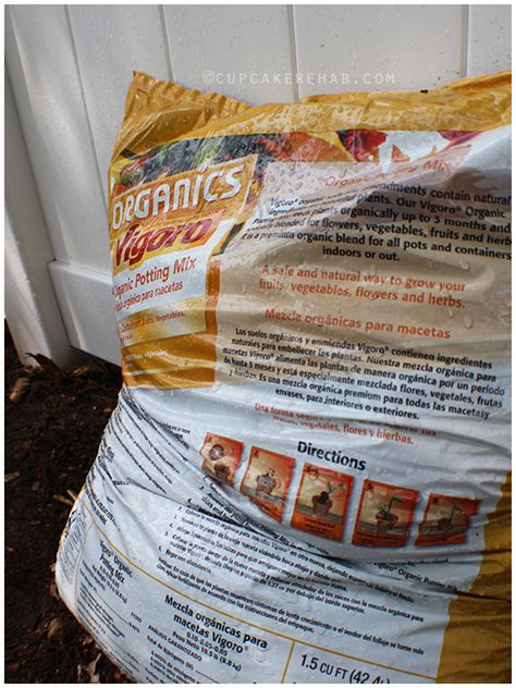 Vigoro Organic Garden Soil by Raised Garden Bed Diy Project