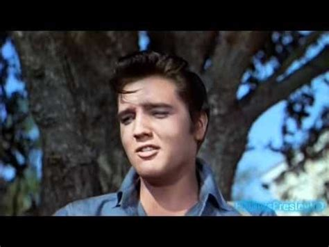 elvis presley biography in spanish 17 best images about elvis music 176 176 184 176 176