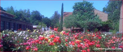 chico state garden lifestyle culture photos