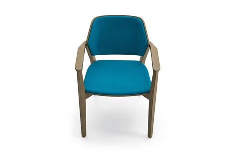 turtle chair australia tutrtle armchair with armrest for informal environments