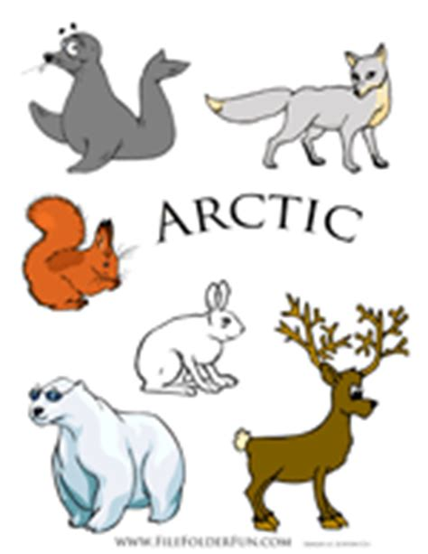 1000 Images About Arctic Animals - polar animals clipart clipground