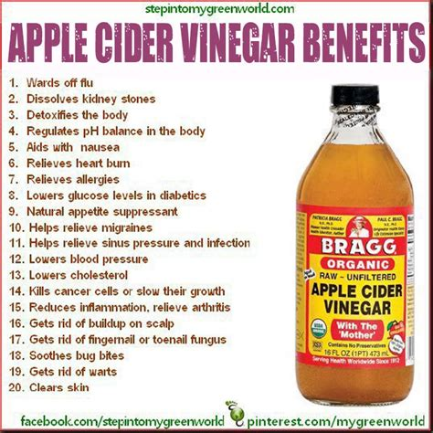 apple cider vinegar apple cider vinegar benefits diet pinterest