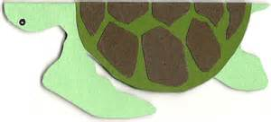 How To Make A Turtle Out Of Paper - sea turtle birthday card something sweet