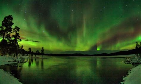 finland in december northern lights borealis nordic experience