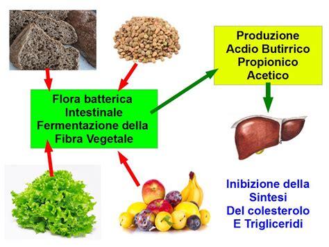 colesterolo alimentare le fibre riducono il colesterolo alimentazione e