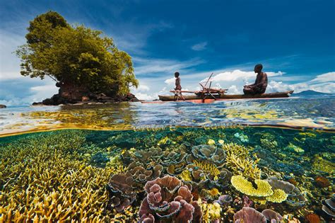 coral reefs    expected   areas