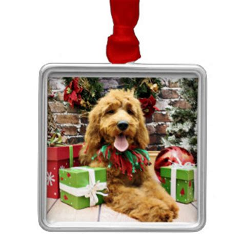 goldendoodle gift ideas goldendoodle gifts t shirts posters other gift