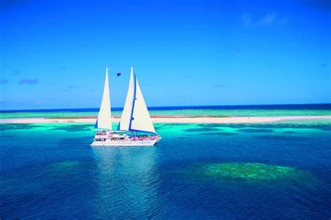 cairns to hamilton island by boat cairns attractions magnificent coral cay tour