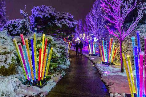 winter flower show  light garden  days  snow