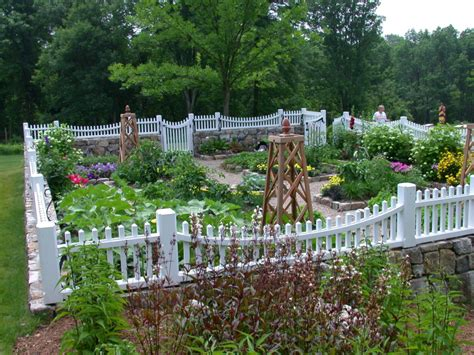 backyard gardening different ways to make an immediate impact on your garden