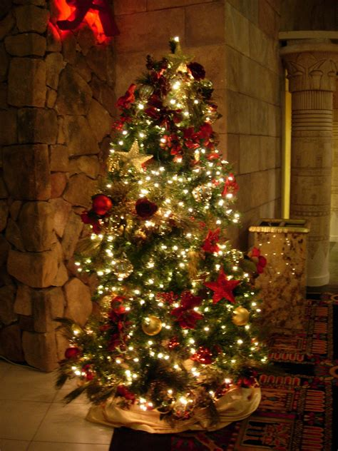 decorated christmas trees christmas trees decorated free large images