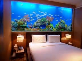 Aquarium Designs fisch aquarium aquarium fische kaufen