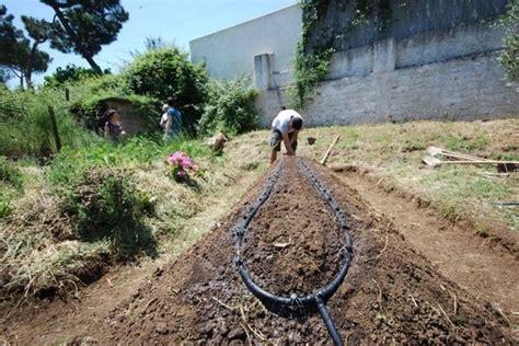innaffiare giardino irrigazione orto impianto irrigazione irrigare l orto