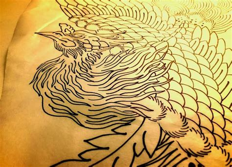 phoenix tattoo drawing for ben chris o donnell tattoo