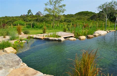 Natural Pool by All Natural Swimming Pools