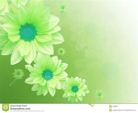 imagenes de flores verdes flores verdes imagens de stock royalty free imagem 722869