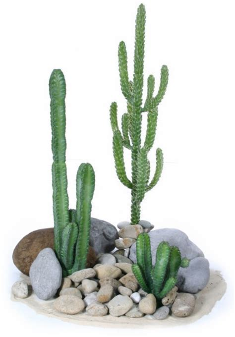 Succulent House by Plantart Artificial Cactus Plants Fake Cactus Plants